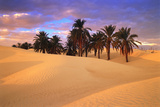 Sahara Desert in Tunisia Photographic Print by Peter Adams