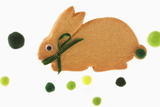 Bunny Cookie with Green Pom-Pom Tail Photographic Print by Martin Harvey