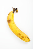 Banana Photographic Print by Frank Lukasseck