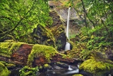 Waterfall Elowah Falls in Pacific Rainforest Photographic Print by Frank Krahmer