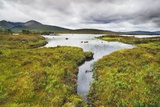 Moorland at Rannoch Moor Photographic Print by Frank Krahmer