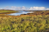 Moorland Photographic Print by Frank Krahmer