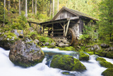 Small Wood Watermill and Brook Photographic Print by Frank Lukasseck