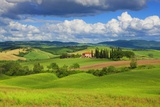 Tuscany Landscape Photographic Print by Frank Krahmer