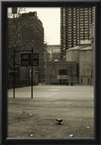 Basketball Court Pigeon NYC Prints