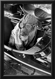 Dog in Motorcycle Sidecar Close-Up Archival Photo Poster Print