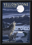 Lamar Valley Scene, Yellowstone National Park Posters