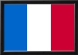 France National Flag Poster Print Posters