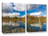 Beaver Marsh, 2 Piece Gallery-Wrapped Canvas Set Prints by Cody York