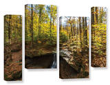Blue Hen Falls, 4 Piece Gallery-Wrapped Canvas Staggered Set Poster by Cody York