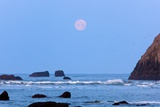 Moon Set over Rock Formations at Low Tide, Bandon Beach, Oregon, USA Photographic Print by Craig Tuttle