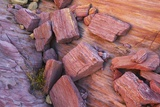 Sand Stone Structures in Valley of Fire Photographic Print by Frank Krahmer