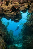 Diver Seen through Opening in Coral Reef. Photographic Print by Stephen Frink