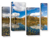 Beaver Marsh, 4 Piece Gallery-Wrapped Canvas Staggered Set Posters by Cody York