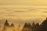 Sunrise over Valley, Oregon, USA Photographic Print by Craig Tuttle