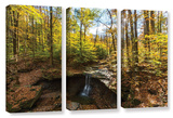 Blue Hen Falls, 3 Piece Gallery-Wrapped Canvas Set Art by Cody York