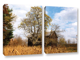 Cvnp Barn, 2 Piece Gallery-Wrapped Canvas Set Posters by Cody York