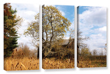 Cvnp Barn, 3 Piece Gallery-Wrapped Canvas Set Prints by Cody York