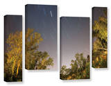 Star Trails, 4 Piece Gallery-Wrapped Canvas Staggered Set Prints by Cody York