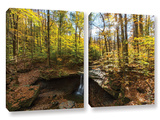 Blue Hen Falls, 2 Piece Gallery-Wrapped Canvas Set Art by Cody York