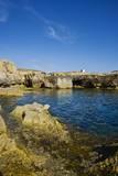 Rocky Landscape near Fungus Rock, Dwejra, Gozo, Malta Photographic Print by Massimo Borchi