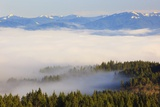 Morning Fog Covers Hood River Valley, Oregon, USA Photographic Print by Craig Tuttle