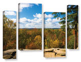 Virginia Kendall, 4 Piece Gallery-Wrapped Canvas Staggered Set Print by Cody York