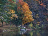 View of River and Forest in Early Autumn, Pittsfield, Massachusetts, USA Photographic Print by Massimo Borchi