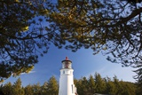 Ampqua Lighthouse, Oregon, USA Photographic Print by Craig Tuttle