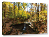 Blue Hen Falls, Gallery-Wrapped Canvas Stretched Canvas Print by Cody York