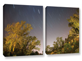 Star Trails, 2 Piece Gallery-Wrapped Canvas Set Posters by Cody York