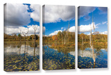 Beaver Marsh, 3 Piece Gallery-Wrapped Canvas Set Posters by Cody York