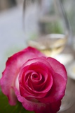 Restaurant, Paris - Pink Roses on the Table Photographic Print by Owen Franken