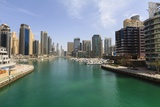 Dubai Marina Photographic Print by Fraser Hall