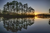 Sunset in Long Pine Area of Everglades NP Photographic Print by Terry Eggers