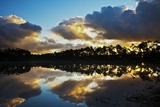 Sunrise in Long Pine Area of Everglades NP Photographic Print by Terry Eggers