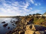 View of Coastline, Pacific Grove, Monterey, California, USA Photographic Print by Massimo Borchi