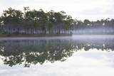Fog over the Lake in Long Pine Area of Everglades NP Photographic Print by Terry Eggers