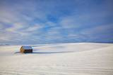 Small Barn in Snow Covered Field Photographic Print by Terry Eggers