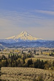Cherry Orchards of the Oregon Columbia Gorge with Mt. Hood in the Back Drop Photographic Print by Terry Eggers