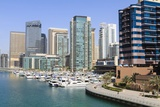 Dubai Marina Photographic Print by Fraser Hall