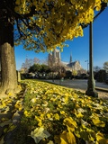 View of the Cathedrale (Cathedral) De Notre Dame from Place (Square) Rene Viviani in Autumn Photographic Print by Massimo Borchi