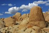 Sandstone Erosion Landscape in Joshua Tree National Park Photographic Print by Frank Krahmer