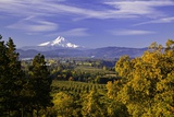 Mt. Hood, Hood River Valley, Columbia River Gorge National Scenic Area, Oregon Photographic Print by Craig Tuttle