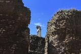 The Roman Forum. Photographic Print by Stefano Amantini