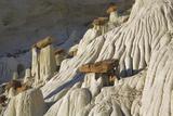 Sandstone Erosion Landscape at Wahweap Hoodoos Photographic Print by Frank Krahmer