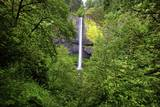Latourell Falls, in Columbia River Gorge National Scenic Area, Oregon Photographic Print by Craig Tuttle