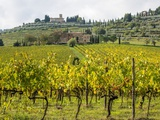 Autumn Vineyards with Bright Color with Villa at on Hill Photographic Print by Terry Eggers