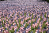 20,000 American Flags for Memorial Day, Boston Commons, Boston, MA Photographic Print by Joseph Sohm