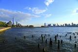 Downtown View with the Freedom Tower from the Hudson River Greenway Photographic Print by Stefano Amantini